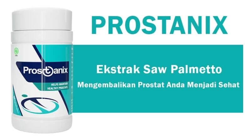 Prostanix Obat Herbal Alami Kanker Prostat
