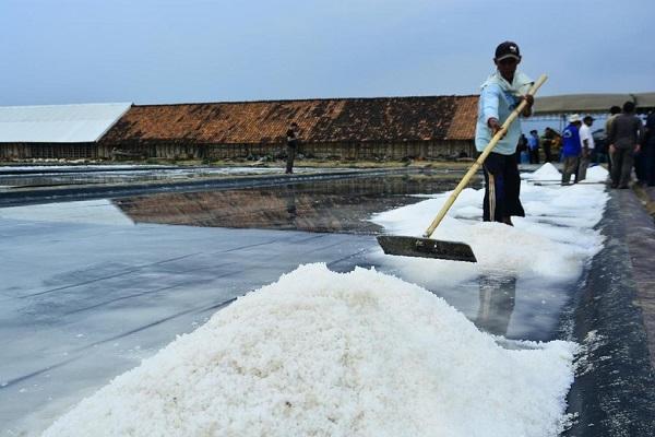 Pemerintah Sudah Putuskan Impor Garam Tahun Ini